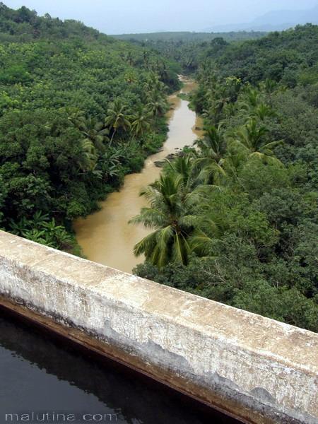 Желтая река...