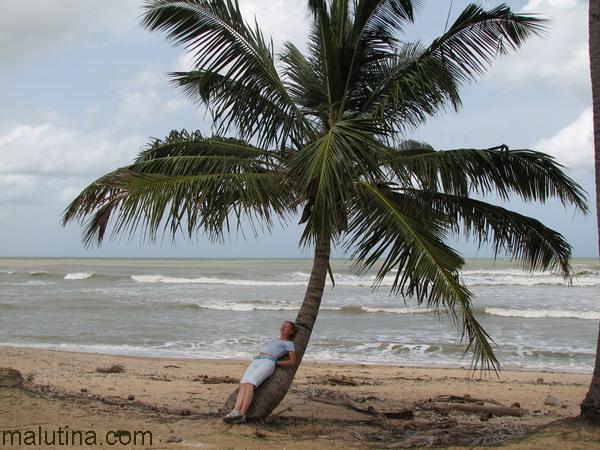 Размышления на берегу океана...